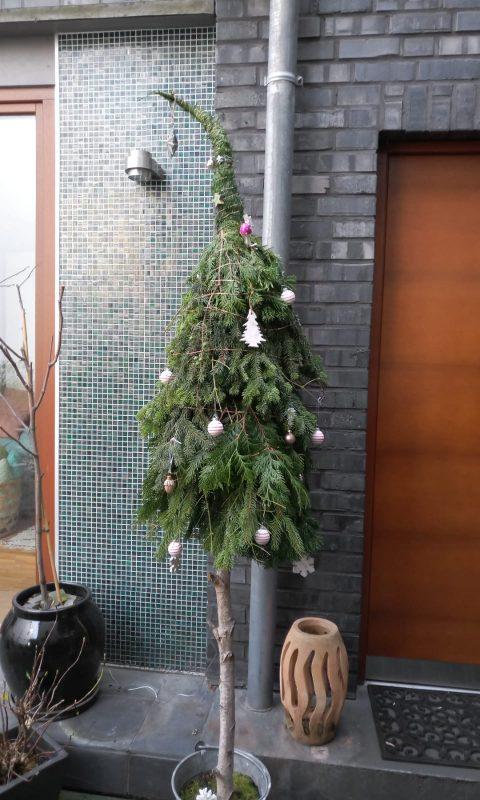 Weihnachtbaum von Bärbel